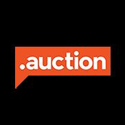 AUCTION Domain Logo