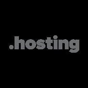HOSTING Domain Logo